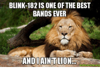 My puns are the best!...Said no one ever. -Mac: BLINK-182 IS ONE OFTHE BEST  BANDS EVER  AND AINT LION My puns are the best!...Said no one ever. -Mac