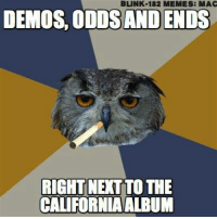 WE DON'T GIVE A HOOT HERE! -Mac: BLINK-182 M  ES: MAC  DEMOS ODDSAND ENDS  RIGHT NETTO THE  CALIFORNIA ALBUM WE DON'T GIVE A HOOT HERE! -Mac
