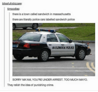 https://t.co/DubR4ecFQY: blissfullybizzare  timoodles:  there is a town called sandwich in massachusetts  there are literally police cars labelled sandwich police  SAMOMILIH POLICE  SORRY MA'AM, YOU'RE UNDER ARREST. TOO MUCH MAYO.  They relish the idea of punishing crime. https://t.co/DubR4ecFQY