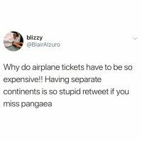 Funny, Airplane, and Back: blizzy  @BlairAlzuro  Why do airplane tickets have to be so  expensive!! Having separate  continents is so stupid retweet if you  miss pangaea BRING BACK PANGAEA