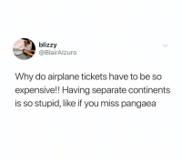 Airplane, Dank Memes, and Continents: blizzy  @BlairAlzuro  Why do airplane tickets have to be so  expensive!! Having separate continents  is so stupid, like if you miss pangaea (@blairrxxo)