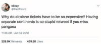meirl: blizzy  @BlairAlzuro  Why do airplane tickets have to be so expensive!! Having  separate continents is so stupid retweet if you miss  pangaea  11:35 AM.Jun 13, 2018  228.9K Retweets  459.3K Likes meirl