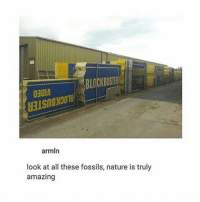 Blockbuster, Funny, and God: BLOCKBUSTER  o30l  armln  look at all these fossils, nature is truly  amazing Idk guys this looks like a Jurassic park scene :- Follow me ( @god.of.appleysauce )for more funny tumblr and textpost