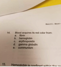 "Memes, Communism, and Intensifies: Blol-213 Blood -  Blood acquires its red color from:  a. fibrin  b. hemoglobin  c. erythropoietin  d. gamma globulin  e. communism  14.  15.  Hemoglobin is confined within th  a ra <p>**communism intensifies** via /r/memes <a href=""https://ift.tt/2pVWrih"">https://ift.tt/2pVWrih</a></p>"