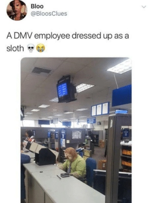 Dmv, Sloth, and Costume: Bloo  @BloosClues  A DMV employee dressed up as a  sloth DMV costume