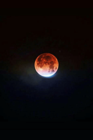 Blood Moon in South Africa: Blood Moon in South Africa