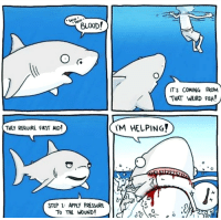 Aww.. Sharks!!: BLOOD!  T'S COMING FROM  THAT WEIRD FISH!  THEY REQUIRE FIRST AID!  M HELPING?  0  STEP 1: APPLY PRESSURE  To THE WOUND! Aww.. Sharks!!