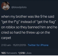 "Iphone, Twitter, and MeIRL: @bloodpilots  when my brother was like 9 he said  ""get the f*g"" instead of ""get the flag""  on roblox so they banned him and he  cried so hard he threw up on the  carpet  2:53 am 15/01/2019 Twitter for iPhone  Ou  165 Retweets 1,518 Likes meirl"