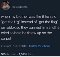 """roblox: @bloodpilots  when my brother was like 9 he said  """"get the f*g"""" instead of """"get the flag""""  on roblox so they banned him and he  cried so hard he threw up on the  carpet  2:53 am 15/01/2019 Twitter for iPhone  165 Retweets 1,518 Likes"""