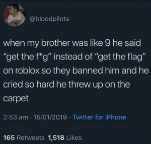 """meirl by Donald2412 MORE MEMES: @bloodpilots  when my brother was like 9 he said  """"get the f*g"""" instead of """"get the flag""""  on roblox so they banned him and he  cried so hard he threw up on the  carpet  2:53 am 15/01/2019 Twitter for iPhone  Ou  165 Retweets 1,518 Likes meirl by Donald2412 MORE MEMES"""