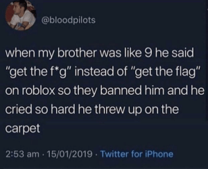 "Iphone, Twitter, and Roblox: @bloodpilots  when my brother was like 9 he said  ""get the f*g"" instead of ""get the flag""  on roblox so they banned him and he  cried so hard he threw up on the  carpet  2:53 am 15/01/2019 Twitter for iPhone Roblox did kinda slap though"