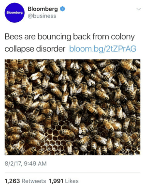 mikepents:  weavemama:   weavemama: BEES ARE THE ULTIMATE QUEENS OF THE COMBACK 🐝🐝🐝🐝 Source to article. The Department  of Agriculture honeybee health surveyreleased a report (August 2nd 2017) that proves honeybee colonies rose 3% compared to last year. Also the amount of bees that disappeared or died has gone down 27%. Bees, you're doing amazing sweetie   YESSS. Thank god. 🙌 : Bloomberg  @business  Bloomberg  Bees are bouncing back from colony  collapse disorder bloom.bg/2tZPrAG  8/2/17, 9:49 AM  1,263 Retweets 1,991 Likes mikepents:  weavemama:   weavemama: BEES ARE THE ULTIMATE QUEENS OF THE COMBACK 🐝🐝🐝🐝 Source to article. The Department  of Agriculture honeybee health surveyreleased a report (August 2nd 2017) that proves honeybee colonies rose 3% compared to last year. Also the amount of bees that disappeared or died has gone down 27%. Bees, you're doing amazing sweetie   YESSS. Thank god. 🙌