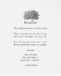 "Branches: BLOSSOMS  The naked branches of winter trees!  They remind me of who I was  And who I thought, I'd never be.  For decaying was my soul,  But his words have made me complete  He said:  ""Don't be alone,  Grow oldwith me.  Don't feel alone  Clairel Estevez"
