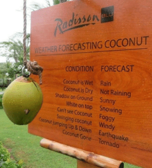 Still more reliable than my local weather channel: BLU  Radissen  WEATHER FORECASTING COCONUT  CONDITION FORECAST  Coconut is Wet Rain  Coconut is Dry Not Raining  Shadow on Ground Sunny  White on top Snowing  Can't see Coconut Foggy  Swinging coconut Windy  Coconut jumping Up &Down Earthquake  Coconut Gone Tornado Still more reliable than my local weather channel