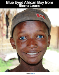Memes, 🤖, and Sierra: Blue Eyed African Boy from  Sierra Leone  ExploreTalentAr Isn't he beautiful? <3