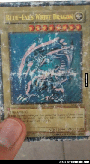 While I was cleaning look what I found… (any yu-gi-oh fans?)omg-humor.tumblr.com: BLUE-EYES WHIHE DRAGON GE  1DRACONI  This Ieg ndary drogen isa powerf  gne of destcton  imvincilde, rers ex have ced this awr some  ATK/3000 DEF/ 2500  OI4 KAZUKI TAKAHASHI  CHECK OUT MEMEPIX.COM  MEMEPIX.COM While I was cleaning look what I found… (any yu-gi-oh fans?)omg-humor.tumblr.com