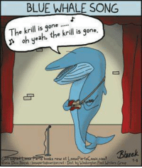 Next he will whale on the sax.: BLUE WHALE SONG  The krill is  one  krill is gone.  oh yea  books, now at LoasePartsComic com!  Dist. Next he will whale on the sax.