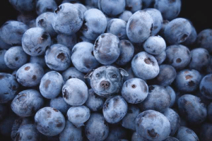 Blueberries!: Blueberries!