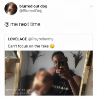 Fake, Memes, and Focus: blurred out dog  @BlurredDog  me next time  LOVELACE  @Playboiantny  Can't focus on the fake  BROU  T TO YOU  BY AKA LESALAD Follow @kalesalad !!!