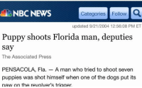 """Dogs, Florida Man, and News: BNBC NEWS  Categories Follow  updated 9/21/2004 12:56:08 PM ET  Puppy shoots Florida man, deputies  say  The Associated Press  PENSACOLA, Fla. A man who tried to shoot seven  puppies was shot himself when one of the dogs put its  naw on the revolver's trigger <p><a class=""""tumblr_blog"""" href=""""http://unicornlordart.tumblr.com/post/130109136834"""" target=""""_blank"""">unicornlordart</a>:</p> <blockquote> <p>Puppy ends the terror spree of the notorious Florida man.</p> </blockquote>"""
