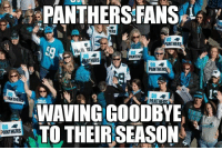 Nfl, Waves, and Panthers: BO  NANTHE  PANTHERS  PANTHERS FANS  88  HERS  BO  PANTHERS  BO  BO  ANTHERS  PANTHER  GO  WAVING GOODBYE That is, if they haven't already jumped on another bandwagon Credit: Tom Zino