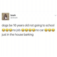 Lmoaa... losers (@boisobscur): boah  @zboah  dogs be 16 years old not going to school  just in the house barking Lmoaa... losers (@boisobscur)
