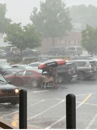 Head, Table, and Boars Head: Boars Head Guy takes the grocery store picnic table umbrella to load his groceries. 10/10 👌🏼
