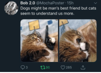 Best Friend, Cats, and Dogs: Bob 2.0 @MochaPoster 15h  Dogs might be man's best friend but cats  seem to understand us more.  3 hashtag relatable