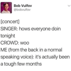 Dank, Memes, and Target: Bob Vulfov  @bobvulfov  [concert]  SINGER: hows everyone doin  tonight  CROWD: woo  ME (from the back in a normal  speaking voice): it's actually been  a tough few months me irl by WalrusMan2019 MORE MEMES