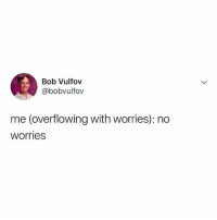 Relatable, Bob, and What: Bob Vulfov  @bobvulfov  me (overflowing with worries): no  worries what worries? 😰