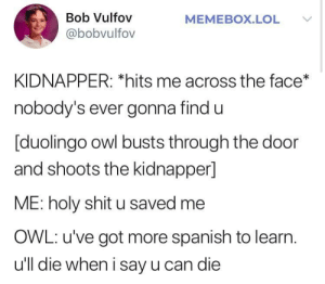 Stolen from somewhere idk by ThatOneTallGuy00 MORE MEMES: Bob Vulfov  @bobvulfov  MEMEBOX.LOL V  KIDNAPPER: *hits me across the face*  nobody's ever gonna find u  [duolingo owl busts through the door  and shoots the kidnapper]  ME: holy shit u saved me  OWL: u've got more spanish to learn  u'll die when i say u can die Stolen from somewhere idk by ThatOneTallGuy00 MORE MEMES