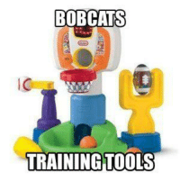 Credit: Sports Memes: BOBCATS  TRAINING TOOLS Credit: Sports Memes