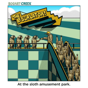 Good times. (OC): BOGART CREEK  THE  ESCALATOR!  VEINDEN  At the sloth amusement park. Good times. (OC)