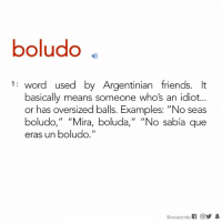"Memes, Argentinian, and 🤖: boludo  1 word used by Argentinian friends. It  basically means someone who's an idiot...  or has oversized balls. Examples: ""No seas  boludo  II  Ira  boluda  II  ""No sabia que  eras un boludo.  @wearemitu Tag boludos."