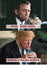 Fucking, James Bond, and Thank You: BOND, JAMES BOND  MORON, FUCKING MORON. Photo credit Hate Liberals? Bite Me. Thank you!