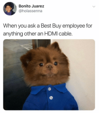 Hmmmm. Let's check over on this aisle..(@bertiebertthepom): Bonito Juarez  @holassenna  When you ask a Best Buy employee for  anything other an HDMI cable. Hmmmm. Let's check over on this aisle..(@bertiebertthepom)