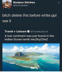 SKSKSKSKS: Bonjour bitches  bitch delete this before white ppl  see it  Travel Leisure @TravelLeisure  A lost continent was just found in the  Indian Ocean tandl.me/2kyZXwZ SKSKSKSKS