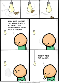 """Dank, Dumb, and Cyanide and Happiness: BONK*  *SIZZLE""""  ue  SIZZLE  WHY ARE MOTHS  SO MINDLESSLY  ATTRACTED TO  SOMETHING THAT  KILLS THEM?  THEY ARE  SO DUMB.  [cyanide and Happiness © Explosm.net"""