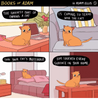 Books, Butt, and Cats: BOOKS OF  ADAM  THE HARDEST PART OF  OWNING A CAT  THAT YOUR CAT's BUTT HOLE  by ADAM ELLIS  COMING To TERMS  WITH THE FACT  HAS TOUCHED EVERY  SURFACE IN YOUR HOME It's true. Nothing is sacred.