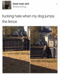 😂: bool man ant  @Henny Plug  fucking hate when my dog jumps  the fence 😂