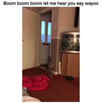 Right on point 😂😂😂: Boom boom boom let me hear you say wayoo Right on point 😂😂😂