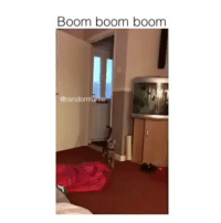 tag your friends: Boom boom boom  @randomturtle tag your friends