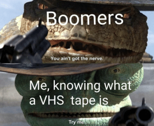 Boomers ain't got no shit on me: Boomers  You ain't got the nerve.  Me, knowing what  a VHS tape is  Try me Boomers ain't got no shit on me