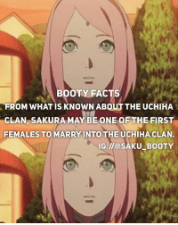 Anime, Booty, and Facts: BOOTY FACTS  FROM WHAT IS KNOWN ABOUT THE UCHIHA  CLAN, SAKURA MAY BE ONE OF THE FIRST  FEMALES TO MARRYINTO THE UCHIHACLAN.  IG://@SAKU BOOTY Thank you for 27k😭 • Affordable merchandise with world wide shipping here~👇🏻 @kuusoukastore link to store in there bio!Naruto Kpop and anime merch! DM me for discount passcode👆🏻 • 🎐•Ignore le hashtags•🎐 { sakura |🌸 sakuraharuno|🌸 sasusaku|🌸 sasuke |🌸 sasukeuchiha |🌸 sakubooty |🌸 naruto|🌸 narutouzumaki|🌸 hinata|🌸| hinatahyuga🌸| kakashi 🌸| sarada 🌸| saradauchiha 🌸| uchiha 🌸| uchihaqueen 🌸| shannaro 🌸| tsunade 🌸| boruto 🌸| borutouzumaki 🌸| Ino 🌸| inoyamanaka 🌸| tenten 🌸| asumasarutobi 🌸| kiba 🌸| shino 🌸| temari 🌸| gaara 🌸| saiino 🌸| naruhina 🌸| shikatema 🌸}