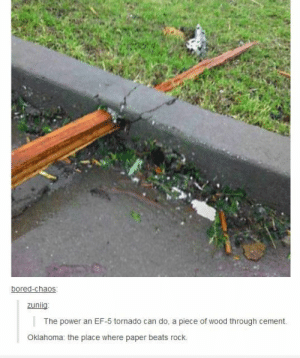 """""""It's not *that* the wind is blowin'… It's *what* the wind is blowin'."""" -Ron Whiteomg-humor.tumblr.com: bored-chaos:  zuniig:  The power an EF-5 tornado can do, a piece of wood through cement.  Oklahoma: the place where paper beats rock. """"It's not *that* the wind is blowin'… It's *what* the wind is blowin'."""" -Ron Whiteomg-humor.tumblr.com"""