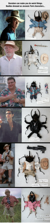 <p>Beetles As Jurassic Park Characters.</p>: Boredom can make you do weird things  Beetles dressed as Jurassic Park characters. <p>Beetles As Jurassic Park Characters.</p>