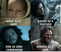 Memes, 🤖, and Got: BORN AS A  KING  DIED AS LORD  COMMANDER  RAISED AS A  BASTARD  REBORN AS A  KING THE KING IN THE NORTH! 🐺👑 . jonsnow jontargaryen kitharington gameofthronesfamily gameofthroneshbo got gameofthrones
