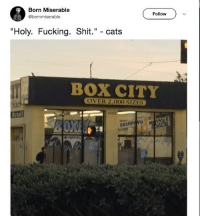 "Cats, Fucking, and Heaven: Born Miserable  @bornmiserable  Follow  ""Holy. Fucking. Shit."" - cats  BOX CITY  OVER 2,000 SIZES  tze  Retail  13412  SHIPPING MON omg cat heaven"