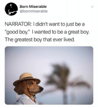 """Good, Dank Memes, and Boy That: Born Miserable  @bornmiserable  NARRATOR: I didn't want to just be a  """"good boy:"""" I wanted to be a great boy  The greatest boy that ever lived (@born_miserable)"""