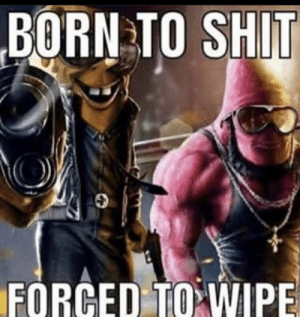 me irl: BORN TO SHIT  FORCED TO WIPE me irl